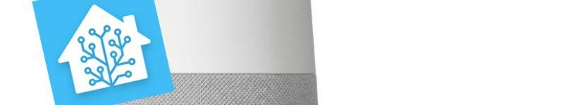 Precisazioni sull'integrazione di Google Nest su Home Assistant 0.105.x