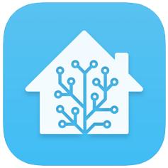 Home Assistant Companion - Icon