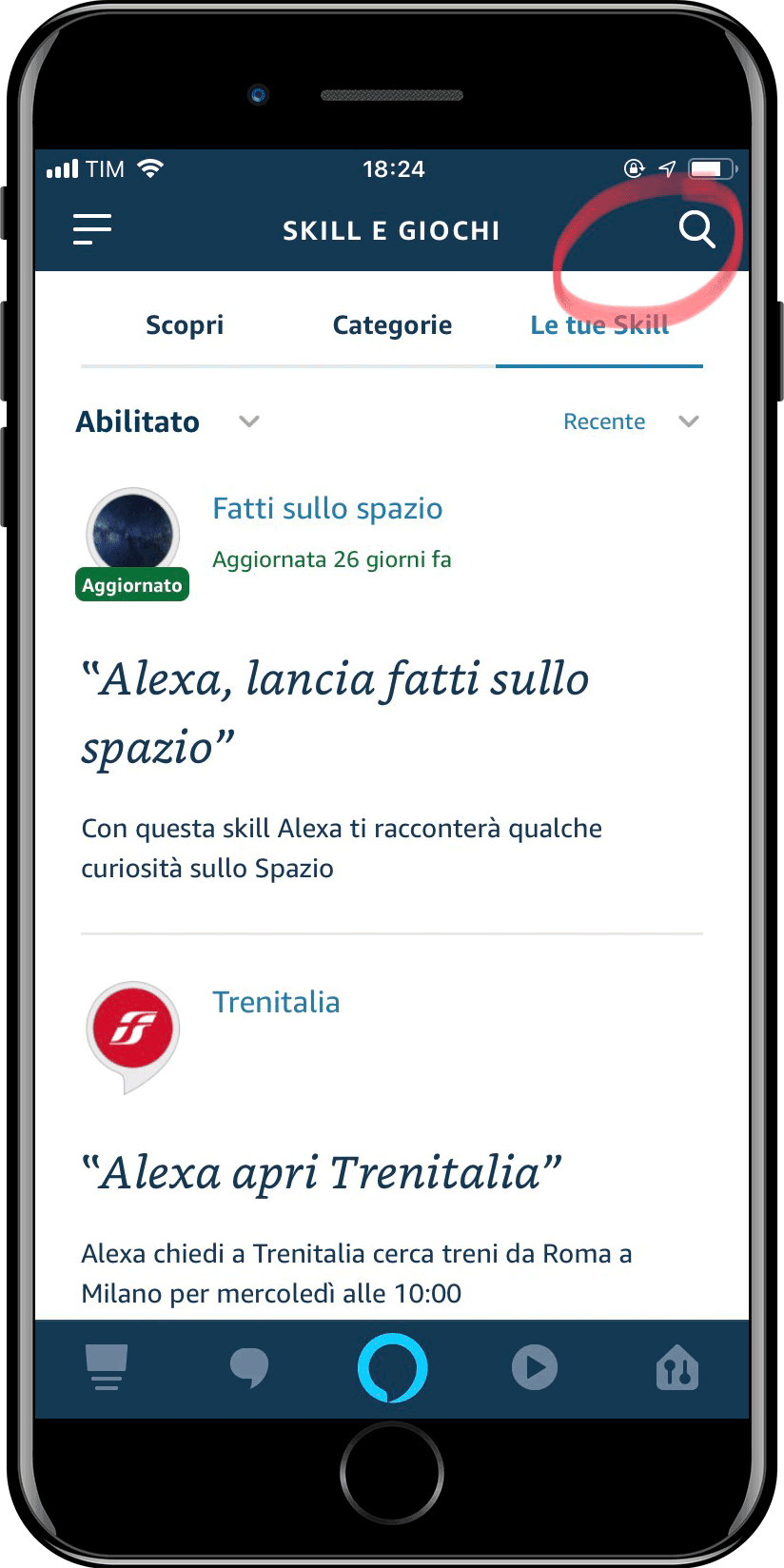 Home Assistant - Integrazione Amazon Alexa - 1