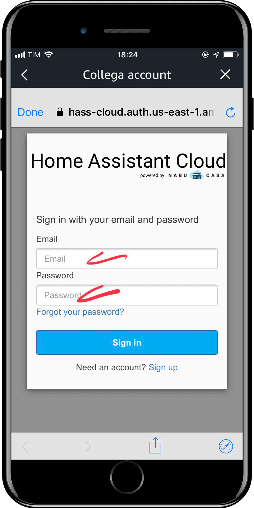 Home Assistant - Integrazione Amazon Alexa - 5