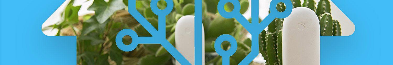 Gestione intelligente delle piante con la domotica Home Assistant