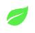 NEST leaf
