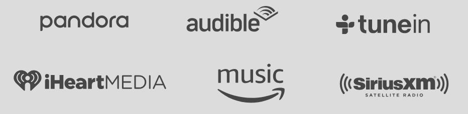 Onelink Safe & Sound - Compatibilità servizi musicali