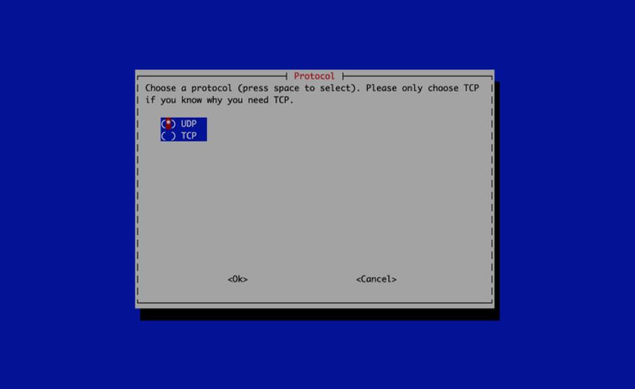 PiVPN - Configurazione - 5