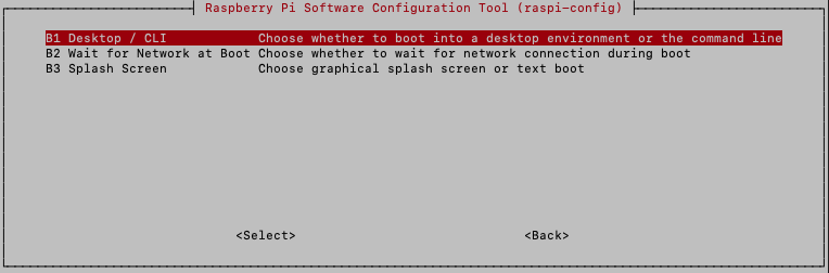 Raspberry Pi - Raspbian Buster config menu - Boot options