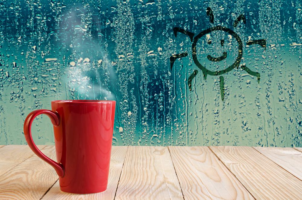 Umidità finestra