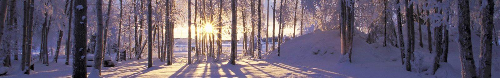 SPECIALE CLIMA: l'inverno e la domotica