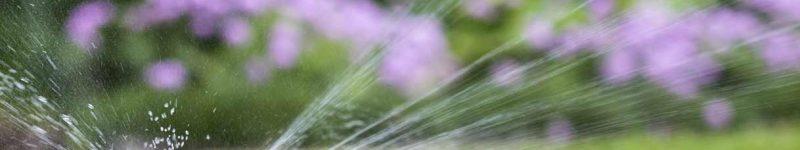 Domotizzare con semplicità l'irrigazione di piante e giardini con Home Assistant (parte 2)
